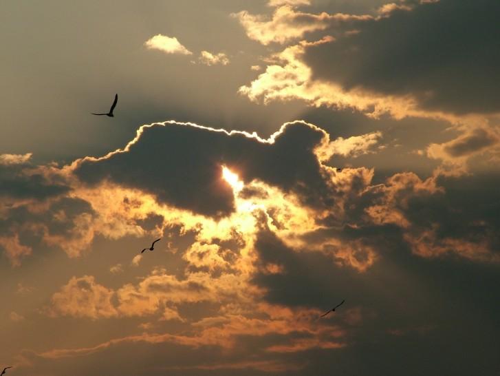 buona notte dans immagini buon...notte, giorno normal_skysetbirds
